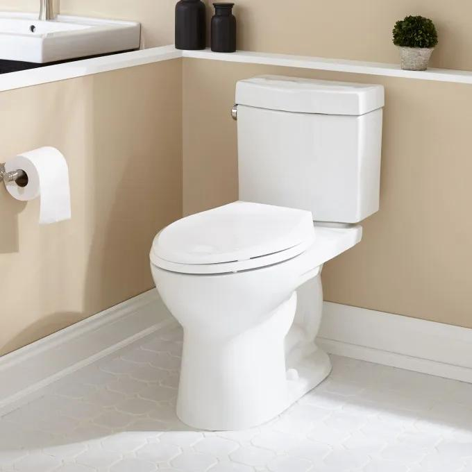 Luther Two-Piece Elongated Toilet - ADA Compliant