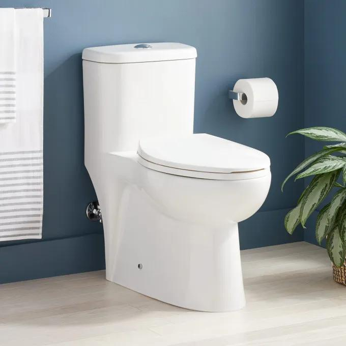 Alledonia One-Piece Elongated Toilet - White