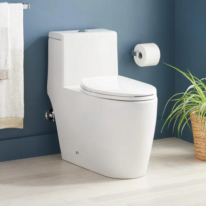 Sitka One-Piece Elongated Skirted Toilet - White