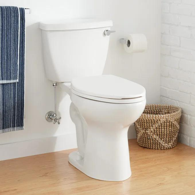 """Bradenton Two-Piece Elongated Toilet with 12"""" Rough-In - 17"""" Bowl Height"""