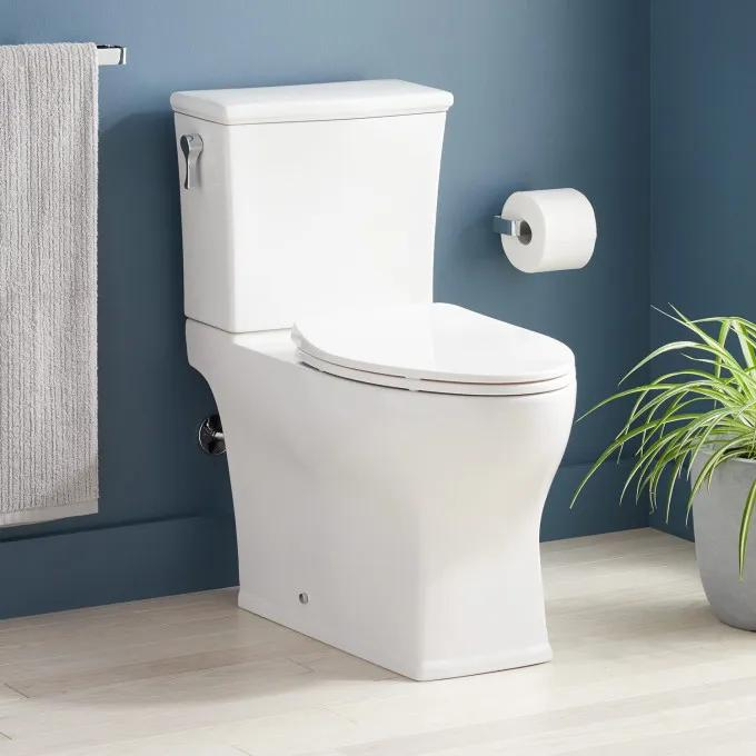 Carraway Two-Piece Skirted Elongated Toilet - ADA Compliant - White