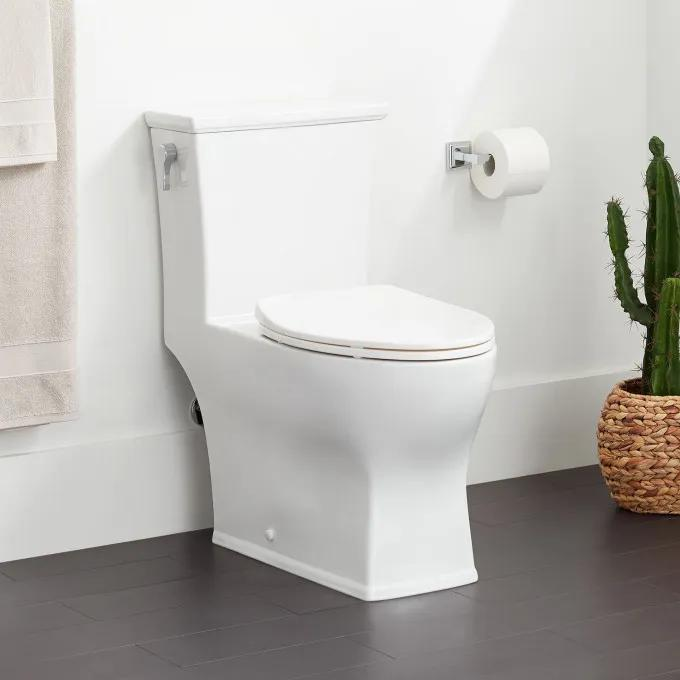 Carraway One-Piece Elongated Toilet
